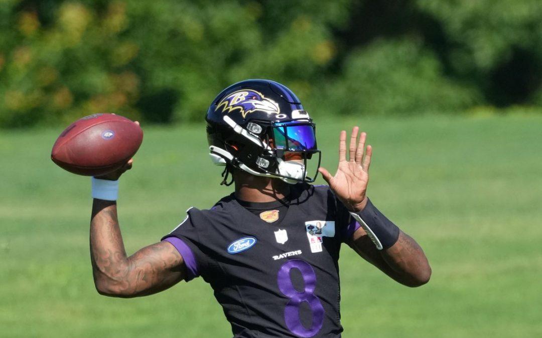 Ravens Talk Across The Interwebs